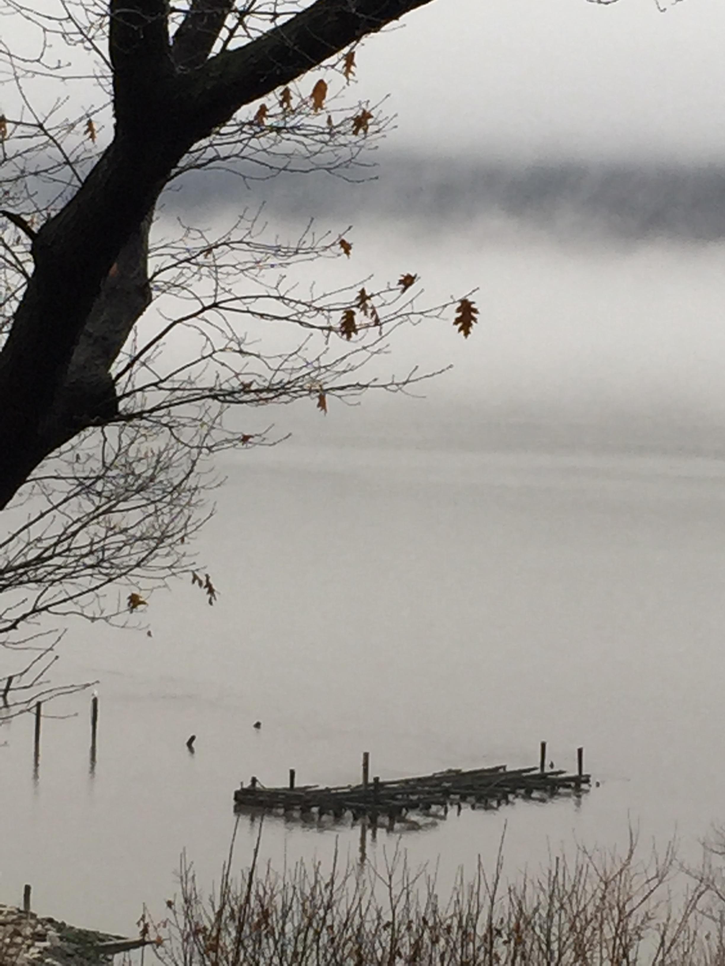 Hudson River Views Fog